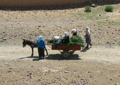 sahara_marokko_desert_tour004