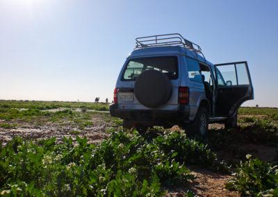 sahara_marokko_desert_tour055