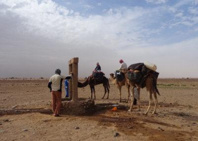 sahara_marokko_desert_tour072
