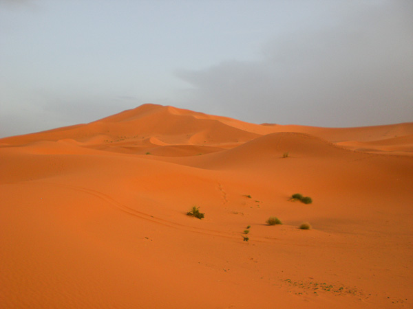 sahara_marokko_desert_tour087