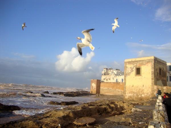 sahara_marokko_desert_tour094