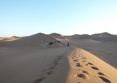 sahara_marokko_desert_tour119