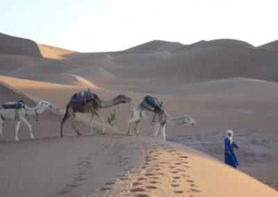 sahara_marokko_desert_tour120