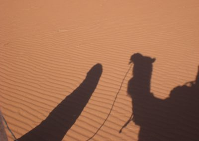 sahara_marokko_desert_tour134
