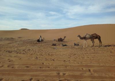 sahara_marokko_desert_tour149