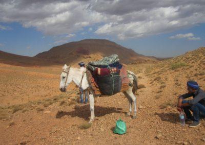 sahara_marokko_desert_tour157