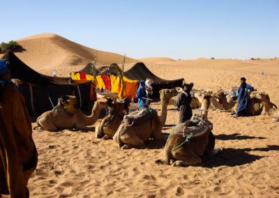 sahara_marokko_desert_tour182