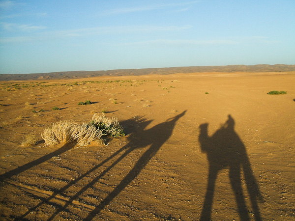 sahara_marokko_desert_tour186