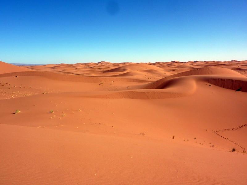 Sahara_Feeling_Marocco_Biwak48