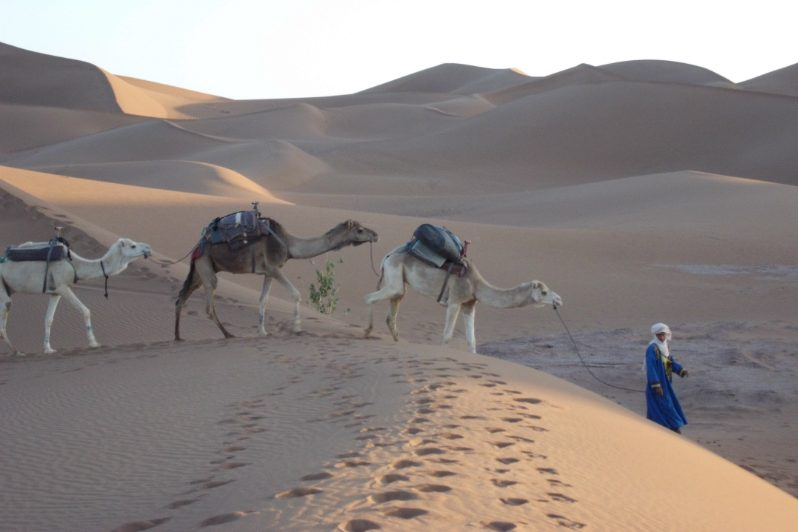 Berberdörfer, Oasen Und Wüstennomaden