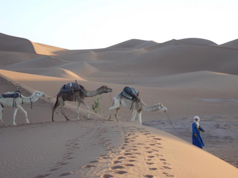 """""""Villaggi Berberi, Oasi E Nomadi Del Deserto""""- Tour 7.3"""