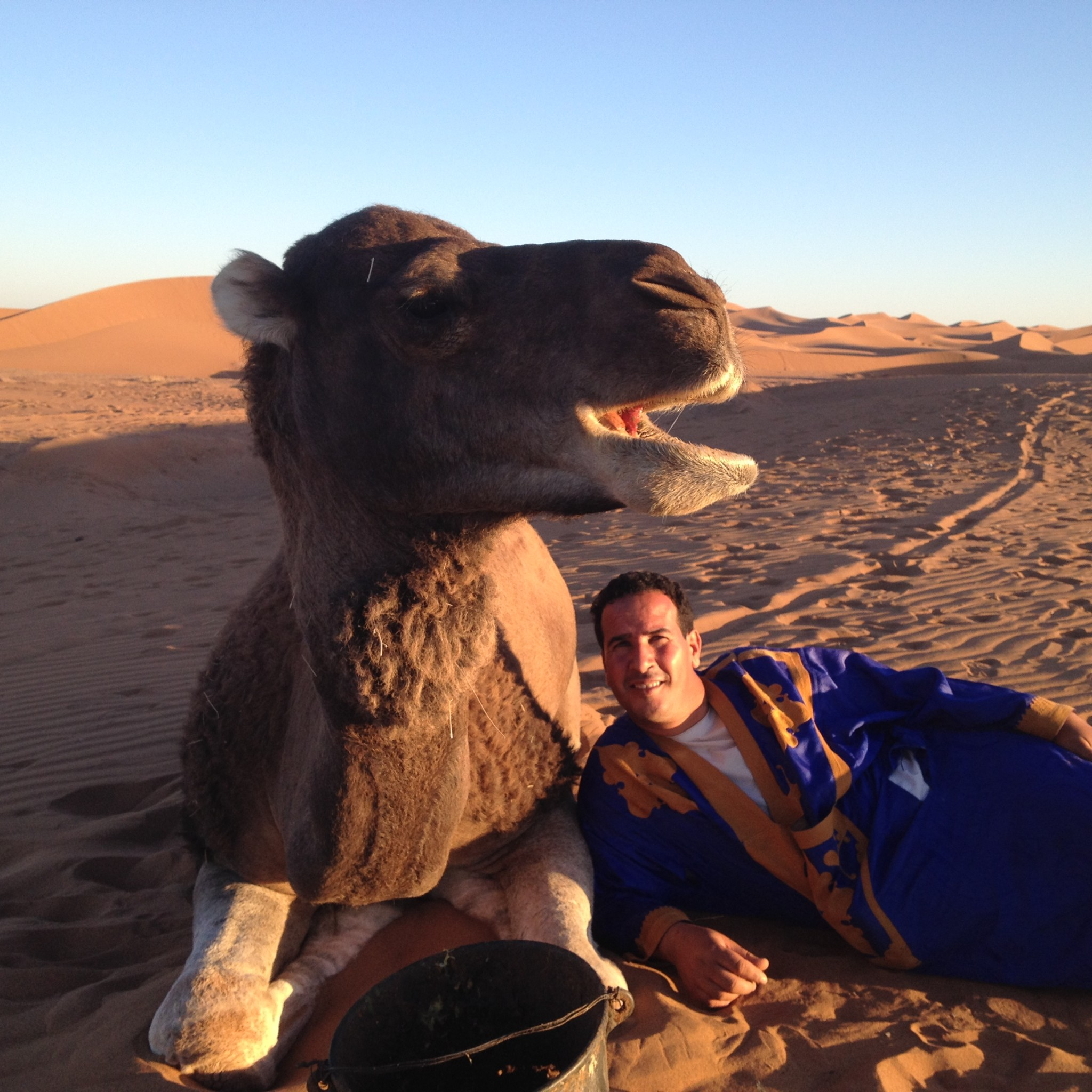 Custom Desert Tours in Sahara | Sahara Feeling Tours