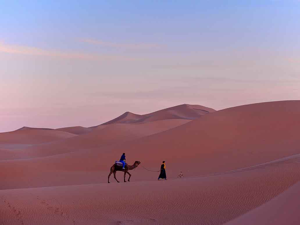 Camel and Guide in Moroccan Desert